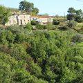 San Mauro Cilento – Terreno Panoramico