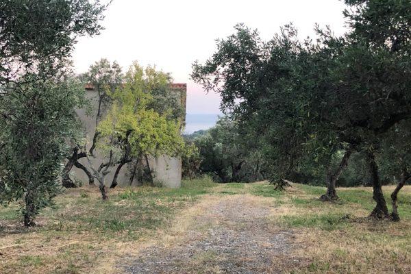 Casal Velino - Fabbricato e terreno